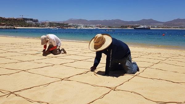 03 Blue Flag México finalizó con éxito revisión de 19 playas certificadas en Los Cabos.