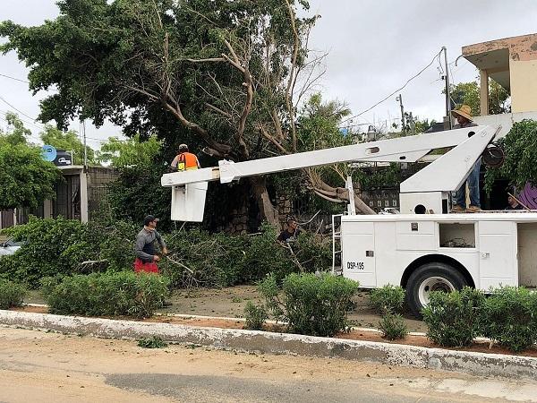 01 Prevé alcaldesa de Los Cabos Armida Castro que en una semana se restablezcan los servicios públicos a un 75% 4