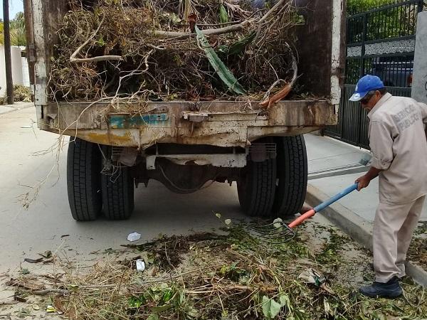 04 Más de 35 toneladas de Ramas y Cacharros se retiran diariamente de las calles de Los Cabos2